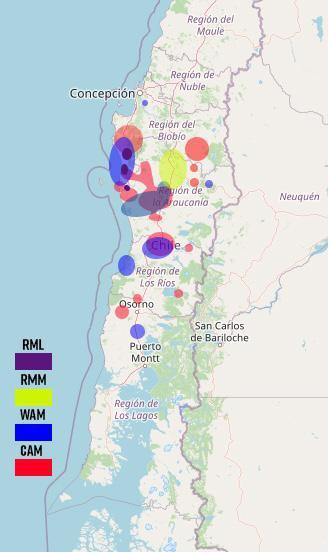 Grupos violentistas mapuche.