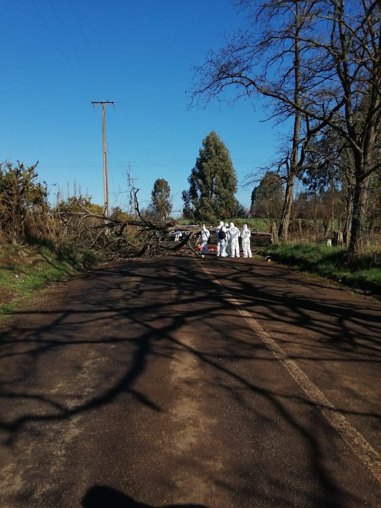 Accidente vehícular en Lautaro.