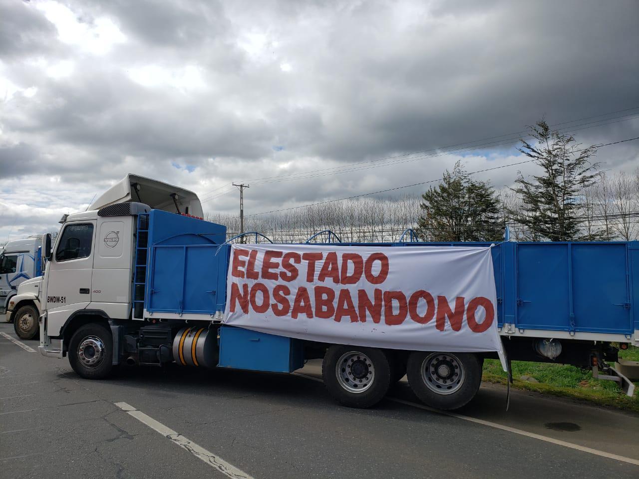 Camiones Pillanlelbun 5